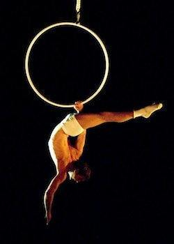 Multiskilled Male Aerial Performer